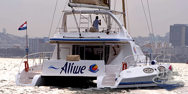 Image from http://www.RoyalCapeCatamarans.com/